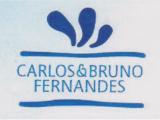 Carlos Manuel da Silva Fernandes